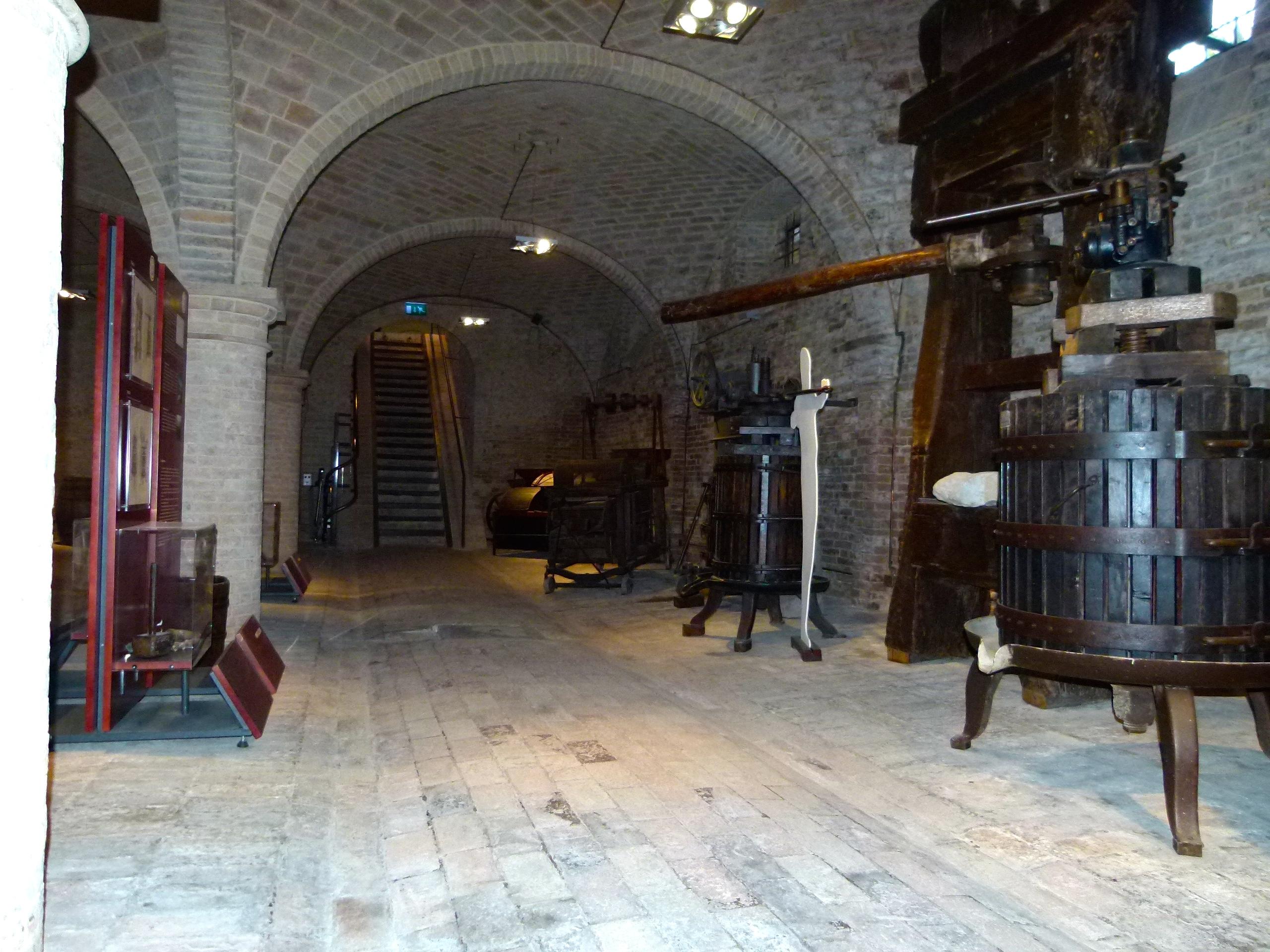 Tolentino museo del vino for Planimetrie della cantina