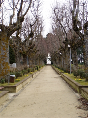Parco Celeste Erard