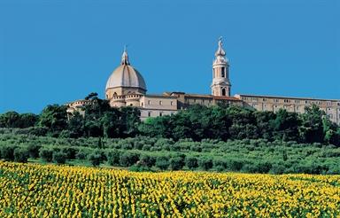 Veduta della Basilica di Loreto con un campo di girasoli