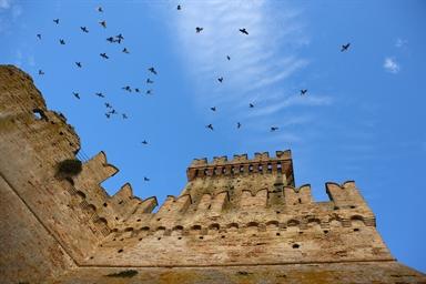Rocca degli Anconitani