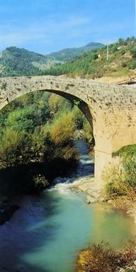 Ponte D